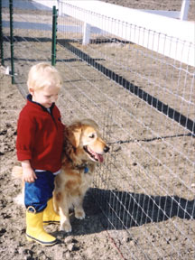 Horse fencing - Equi-Tee protects your children and animals too