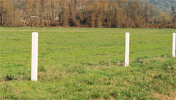 Horse fence - Invisible fencing won't work. Safe fencing needs to be visible